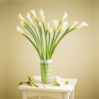 Calla Lilies with Glass Vase